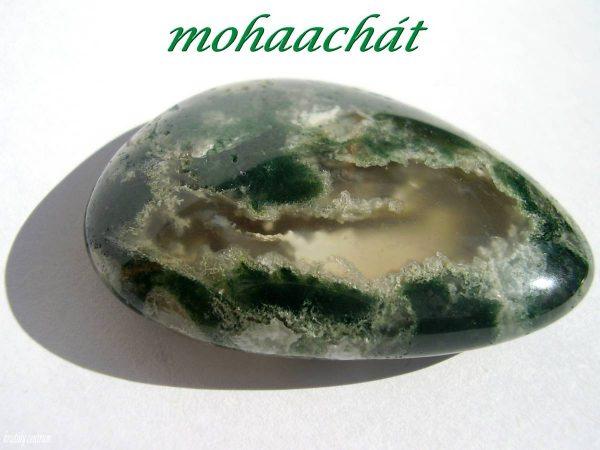 Mohaachát
