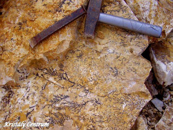 Dendritekkel borított szikla szerszámokkal